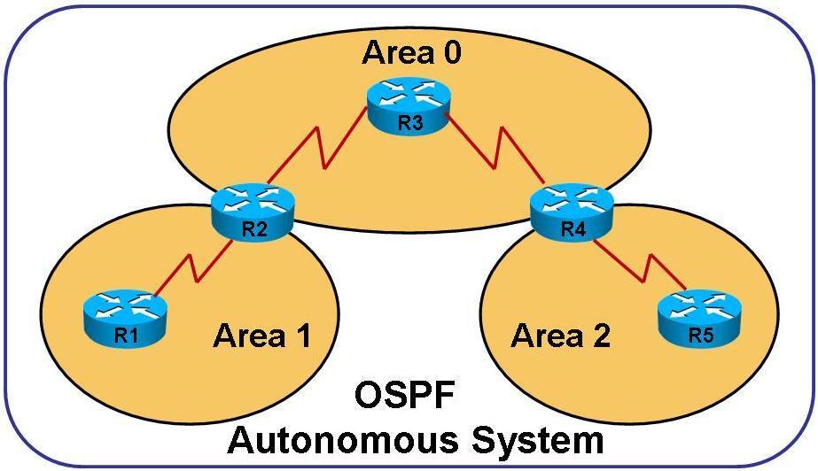 сеть OSPF