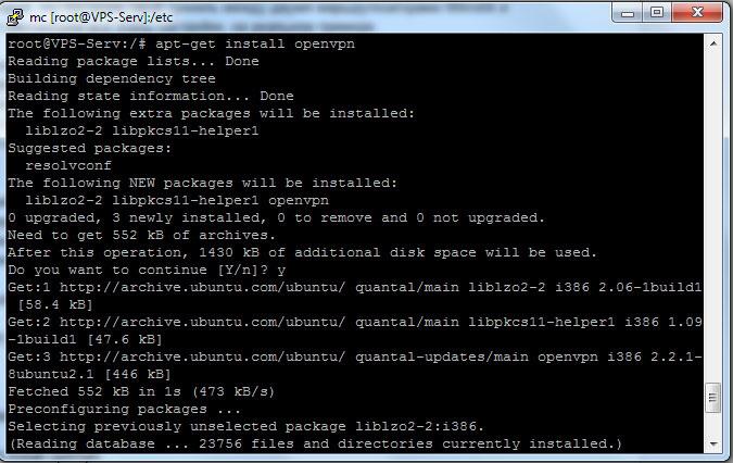 установка пакета OpenVPN